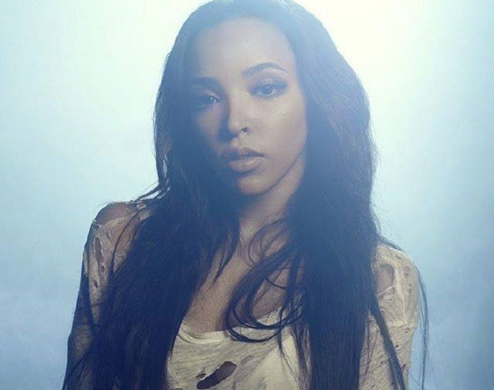 tinashe chris brown player