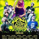 bluesbrezoi2